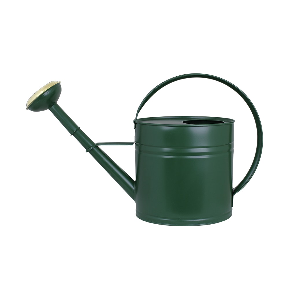Vattenkanna Oval Mossgrön 4L