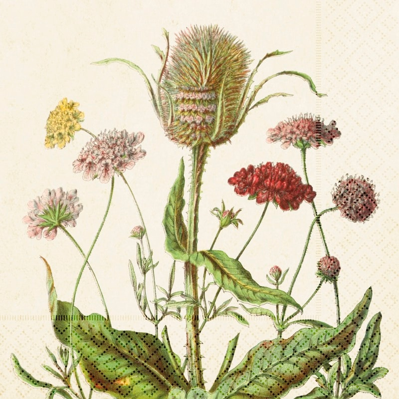 Pappersservett Blomsteräng
