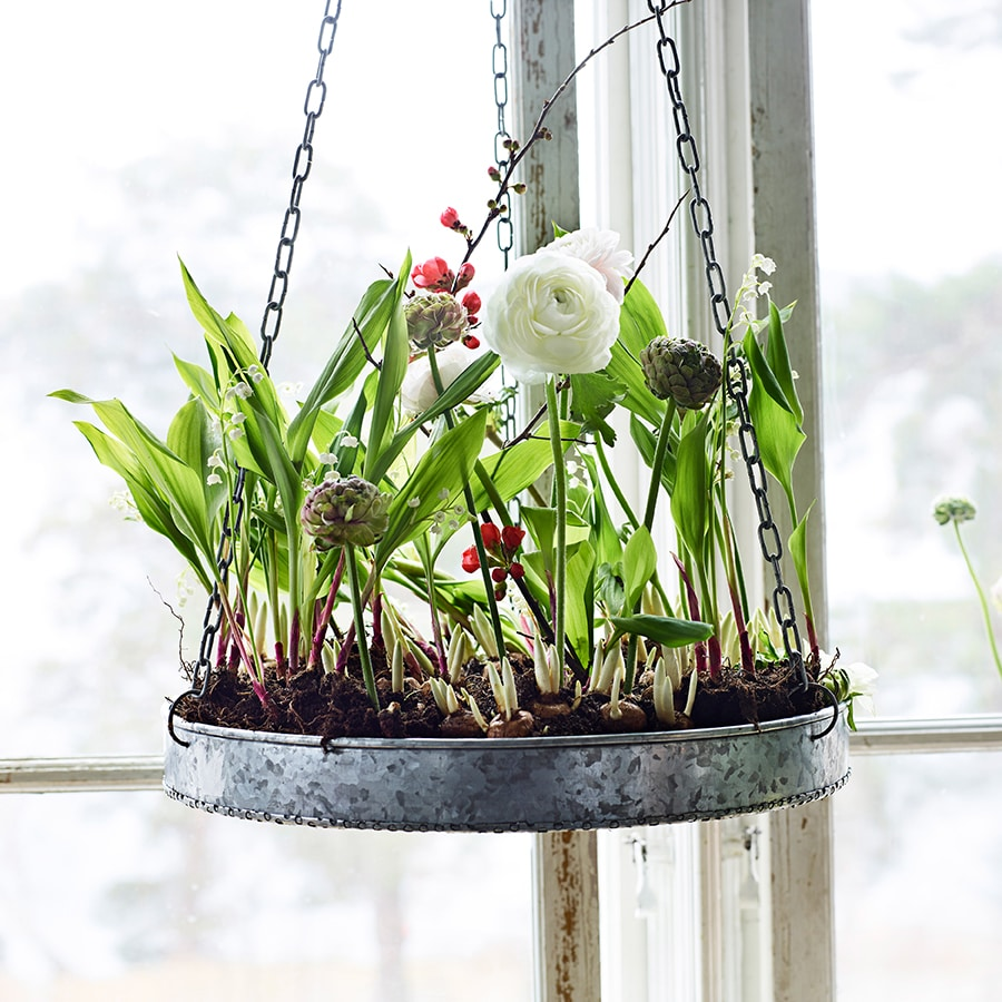 Hanging Tray Zinc